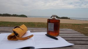 Whiskey writing the beach